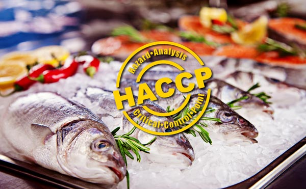 As a specialist perishables transportation business we understand that the safety of the general public, and the reputation of our clients at stake with every delivery.  This is why we have invested heavily in the people, systems and technologies that enable us to meet the requirements of our HACCP, RLSC, and WQA accreditations at all times.